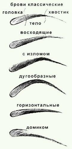 Форма брови