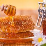 Мед: польза и вред для здоровья