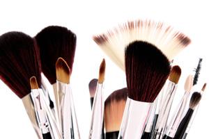 Для чего какая кисть нужна в макияже. Как выбрать кисти для макияжа фото